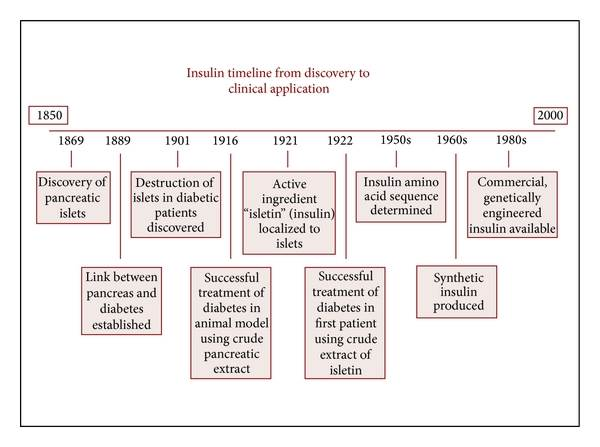 Insulin Discovery Timeline